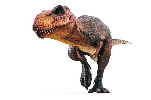 Pourquoi choisir les casquettes dinosaure pour les enfants?