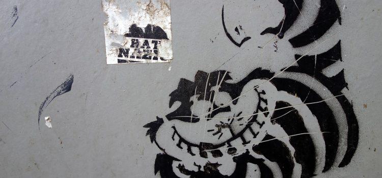 Combinaison chat du Cheshire